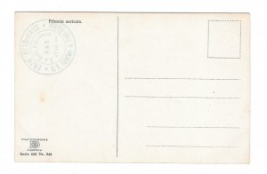 Alpenflora Primula Austria Otto Haus Nenke Ostermaier Serie 523 N 944 Postcard