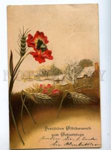 240548 BIRTHDAY Landscape POPPY Field Vintage EMBOSSED PC