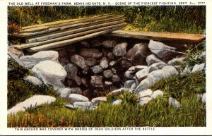 New York Bemis Heights The Old Well At Freeman's Farm Curteich