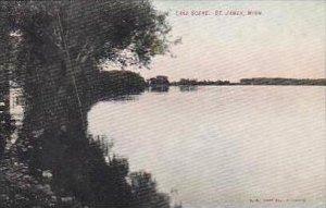 Minnesota St James Lake Scene