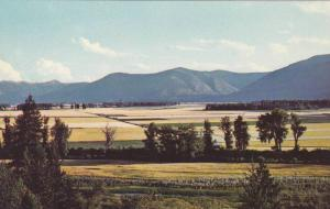 Scenic view,  Kootenay Flats, Farm Land,  Kootenay River Valley,  Creston,  B...
