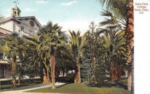 Santa Clara California~Santa Clara College~Walk Thru Palm Trees~1908 Postcard