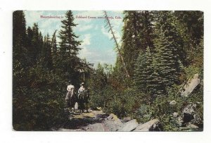 Postcard Colo. Mountaineering Hubbard Canon Canyon Paonia Standard View Card
