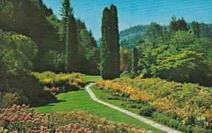 Canada Sunken Garden The Butchart Gardens Victoria British Columbia