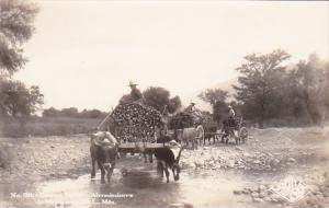 Farmers With Ox Drawn Loaded Wagons Monterrey Mexico Real Photo