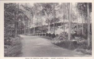 New York Saint Joseph's Road To Grotto and Farm Albertype