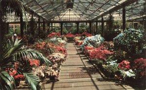 Postcard Longwood Gardens Wilmington Delaware