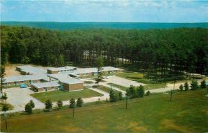 Bracebridge Ontario~The Pines Motel~Aerial View~1950s Postcard