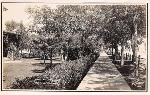Alliance Nebraska~Homes on Larramie Avenue~Board Sidewalk~Hedges~1908 RPPC