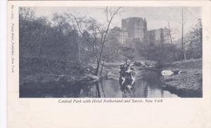 Central Park & Hotel Netherland & Savoy, New York City , Pre-1907