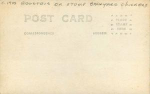 Backyard Chickens C-1910 Roosters on Stump RPPC Photo Postcard 909