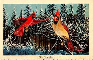 Ohio State Bird Cardinal