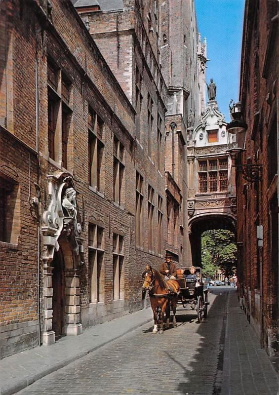 Belgium Brugge, Blinde Ezelstraat with the Bridge of Sighs Horse