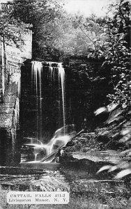 Cattail Falls Livingston Manor New York