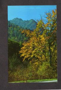 TN Chimney Tops Mtns Tennessee Postcard NC Great Smoky Mountains National Park