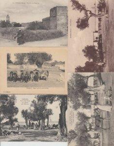 OUDJA  MAROC MOROCCO Afrique 66 Cartes Postales 1900-1940