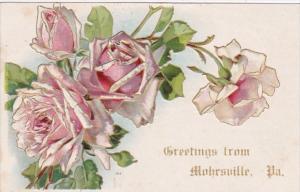 Pennsylvania Greetings From Mohrsville 1909