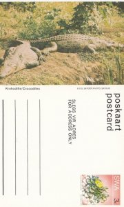 South West Africa (SWA) now Namibia ; Crocodiles , 40-60s