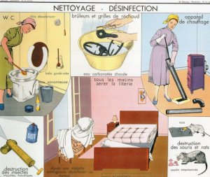 Toilet Cleaning Disinfection Insectocutor Bed Vacuum Wall Chart Postcard