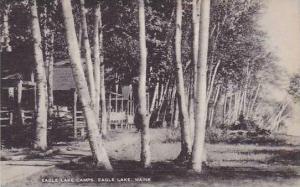 Maine Eagle Lake The Egale Lake Camps Artvue