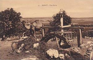 Irrigation; Une Noria , RABAT , Morocco , 00-10s