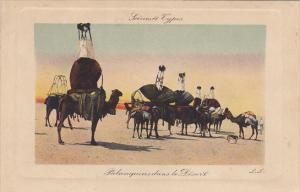 Africa Scenes Types Palanquinsdans le Desert Camel Caravan