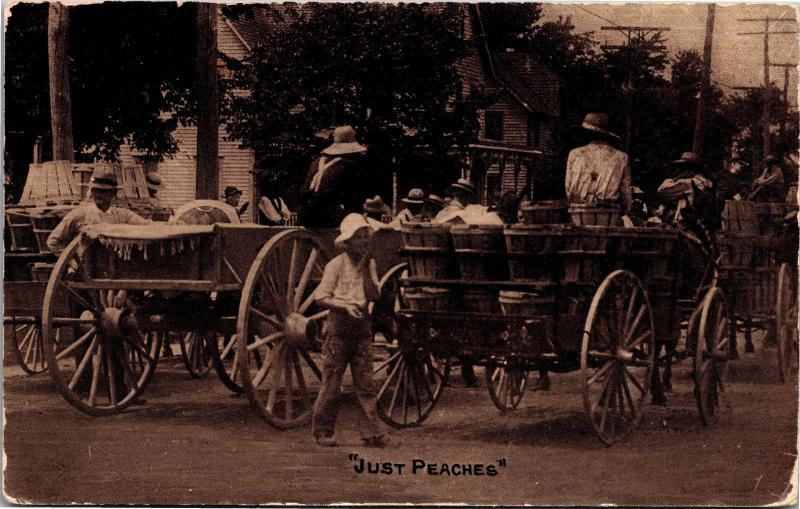 Taking Peaches to Market Bushel Baskets Wagons Workers Photo Postcard H02