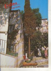 Postal 013835: Rua tipica de Alfama, Lisboa, portugal