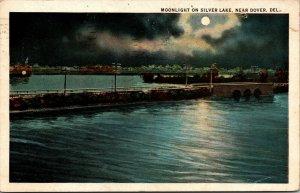 Vtg 1920s Moonlight on Silver Lake Night View Near Dover Delaware DE Postcard
