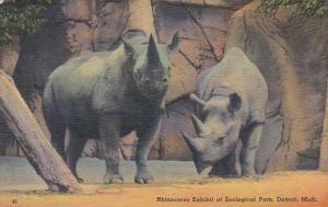 Michigan Detroit Rhinocerus Exhibit In Zoological Park