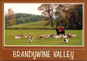 Fox Hunting Brandywine Valley Pennsylvania