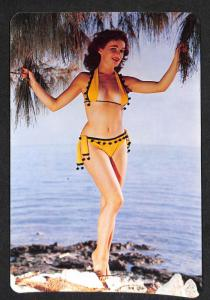 A Miss by the Sea Bathing Suit Beaty Pin-Up 6 x 9 Postcard