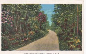 New Hampshire Greetings From Pittsfield 1936