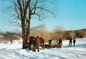 Vermont Maple Sugaring In Vermont