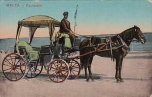 Malta Carrozzin Horse Drawn Carriage