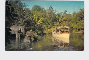 VINTAGE POSTCARD DISNEYLAND ADVENTURELAND ELEPHANT BATHING POOL