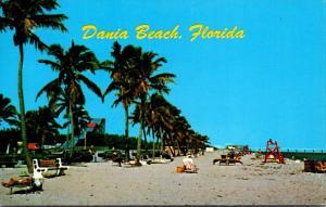 Florida Dania Beach Looking North