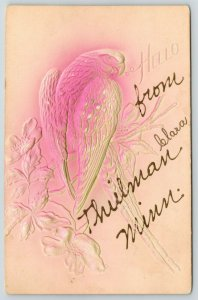 Hello From Theilman Minnesota~Red Heavily Embossed Airbrushed Parrot~c1910