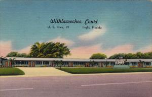 Withlacoochee Court , US HWY 19 , INGLIS , Florida , 30-40s