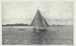 Postcard - NY - New York - Port Jefferson Long Island Sailboats Unposted