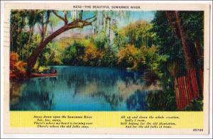 Suwannee River, Fl