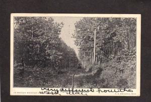 PA Weygadt Mountain Paxinosa Easton Pennsylvania Postcard Penn Trolley Train Car