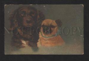 070397 Terrier & PUG Puppies Vintage Color PC