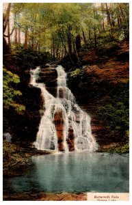 New York   Buttermilk Falls Green lake