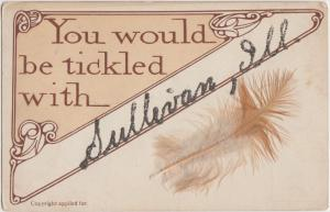 Illinois Il Postcard c1910 SULLIVAN Feather Tickled Greetings Glitter