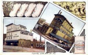 Voigt Milling Co, Crescent Flour Grand Rapids MI Unused