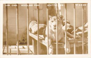 Lion Cage Woodland Park Zoo Seattle Washington Real Photo