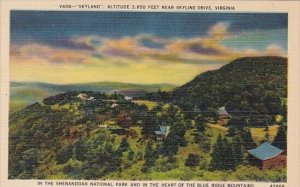 Virginia Skyland In The Shenandoah National Park And In The Heart Of The Blue...