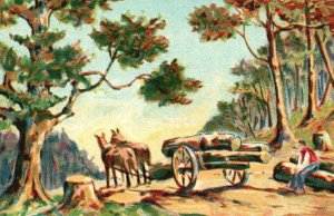 Vintage Postcard Man Rests Logs Timber Horse Drawn Wagon Cutting Trees Artwork