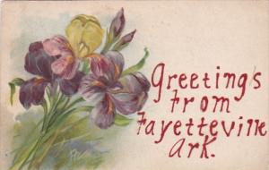 Arkansas Greetings From Fayetteville 1907 Curteich